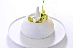 Kopfsalat weiße Schokolade(1)
