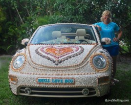 Shell-Love-Bug-front-hood-seashells